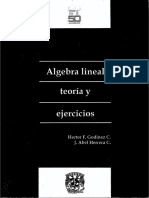Álgebra Lineal, Teoría y Ejercicios .pdf