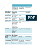 Musculos inserciones y inervacin miembro superior.docx
