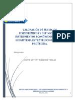 Valoración de Servicios Ecosistémicos y Definición de Instrumentos Económicos Para Un Ecosistema Estratégico o Un Área Protegida.