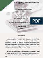 SLIDES DA APRESENTAÇÃO DA BANCA NO SEMINÁRIO DE ESTAGIO