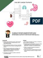 Ejercicios órganos diarioeducacionblog