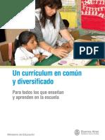 Un curriculum en comun y diversificado.pdf