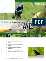 Perfil Avistamiento de Aves - Webinar