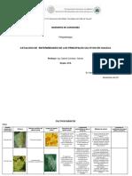 Catalogo de Enermedades a7a