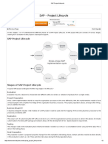 SAP Project Lifecycle