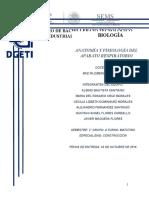 Anatomía y Fisiología Del Sistema Respiratorio 1