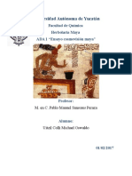 Medicina Tradicional_ Una Perspectiva Desde La Comovisión Maya y Actualidad