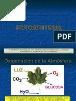 54_12 Fotosintesis