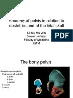 070710 - Anatomy of Pelvis and Fetal Skull
