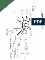 chemistry organic reaction web