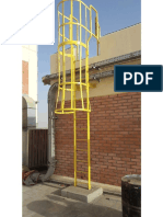 Monkey Ladder Site Photo