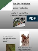 Ciencias Del Ambiente