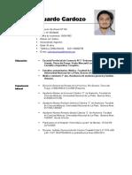 Curriculum Julio Cardozo