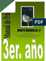 Botanica Practicas
