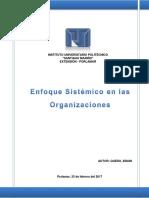 Enfoque Sistemico Organizacional PDF