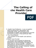 The Healthcare Provider