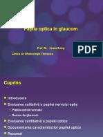 Papila Optica in Glaucom