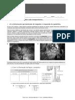 Santillana CN5M5 Interdiciplinaridade1