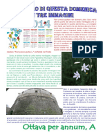 Vangelo in immagini VIII domenica per annum A.pdf
