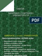 sjemenjac48de-spermatophyta