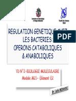 TD2BMS6.pdf