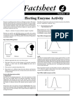 Enzyme Activity