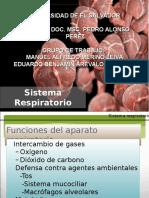 Fisiologiadelaparatorespiratorio 150423232158 Conversion Gate02