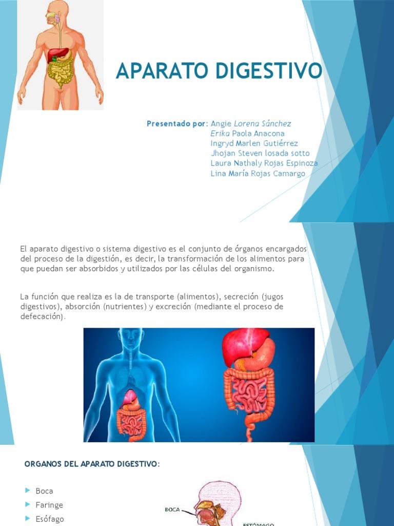 Enfermedades del sistema digestivo diarrea wikipedia