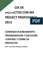 Gerencia de Proyectos Con Ms Project Profesional 2013