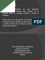 Fisiologia  Tiroides pptx.pptx