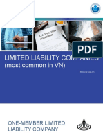 Limited liability company KL-1.pptx