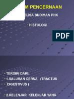 Histologi - dr.Elisa Budiman.ppt