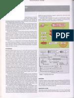 Bab 398 Demam Tifoid.pdf