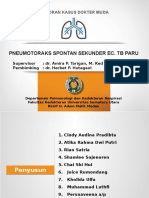 LapKas - Pneumotoraks