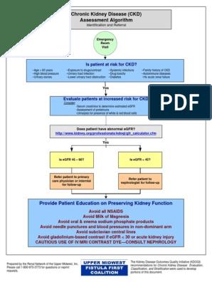 ALGORITMA GINJAL | Chronic Kidney Disease | Renal Function