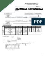 Funciones Inorganicas Teoría María 2