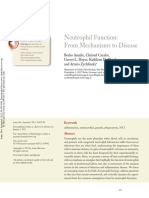 review-Neutrophil Function- from mechanisms to disease.pdf