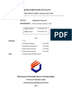 laporan FFE
