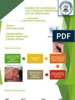 Medicina Tropical Oncocercosis