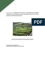 Producción del café arábigo en Zaruma y su impacto ambiental, autor Ing Vladimir Jaramillo García, Msc