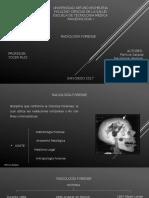 Radiologia Forense