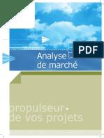 Analyse de Marché.pdf