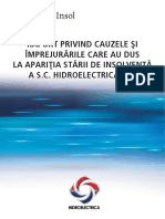 Raport_cauze insolventa.pdf