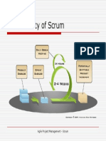 Scrum Functionality.ppt