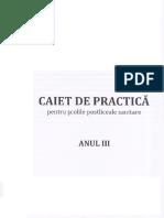 Caiet de practica Anul III.pdf