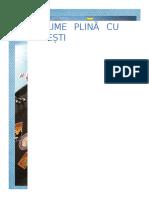 Revista-COPILARIE-nr.-4.docx