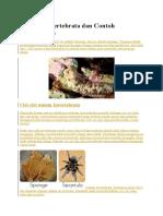 Ciri Invertebrata