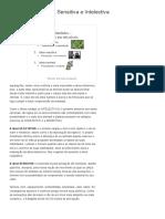 A Alma Vegetativa, Sensitiva e Intelectiva _ Contraponto Blog