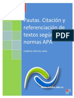 Instructivo-pautasnormasapa201.pdf
