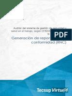 GENERACION DE REPORTES DE NO CONFORMIDAD